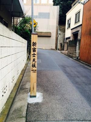 shinfujimizaka