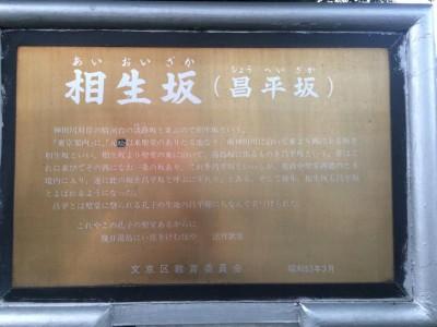 aioizaka-shoheizaka2