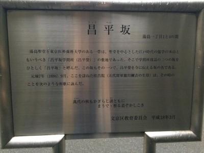 shoheizaka2