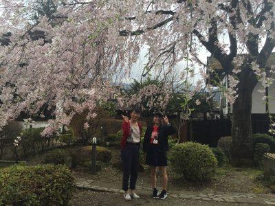 写真 2016-04-17 10 01 53