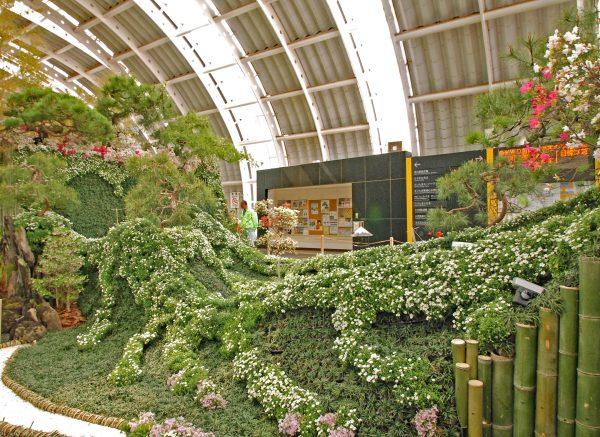世界盆栽大会 さいたま新都心自由通路展示