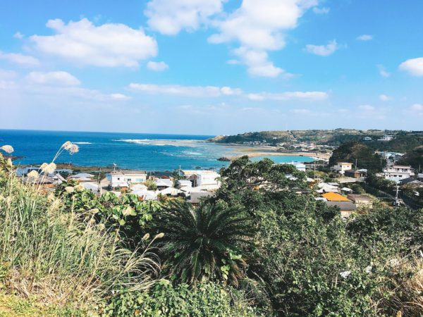 徳之島の景色