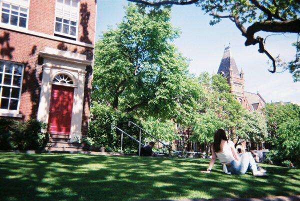 キャンパス内の庭