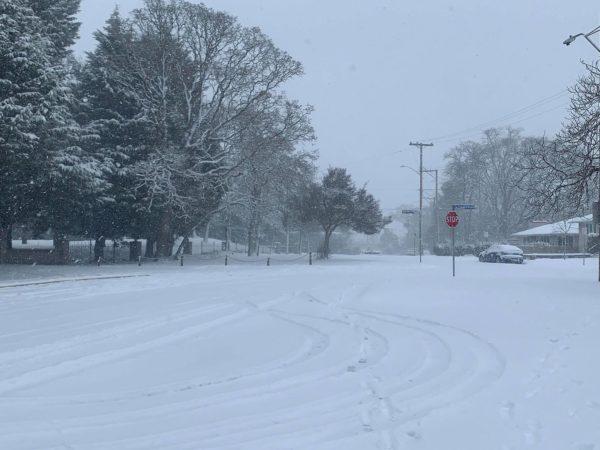 道に積もった雪